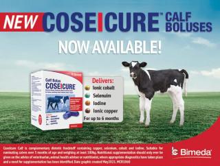 Bimeda Ireland Adds New Trace Element Bolus To Its Range - CoseIcure Calf