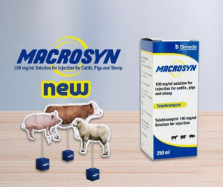 Bimeda launches new 250ml size for Macrosyn, 100mg/ml tulathromycin solution for injection for cattle, pigs and sheep