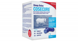 Cosecure - Sheep