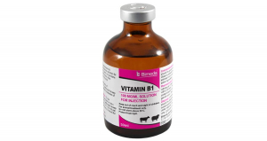 Vitamin B1 Injection