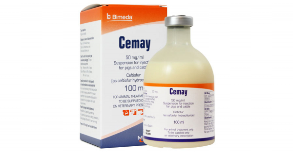 Cemay